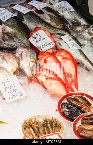 Piscine Omicho Ichiba, marché Omicho, plus grand marché de produits frais dans la région de Kanazawa, Japon. Décrochage du poisson frais avec divers poissons portant sur lit de glace pilée. Banque D'Images