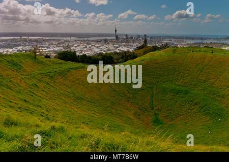 Sur le mont Eden, Auckland, île du Nord, Nouvelle-Zélande Banque D'Images