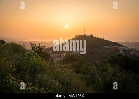 Belle matinée à Barcelone sur le sommet d'une colline, entouré par la nature. Autre point de vue unique de la ville au lever du soleil. Banque D'Images