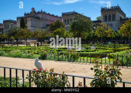 Musée d'arts et traditions populaires, de la place de l'Amérique, Séville, Espagne Banque D'Images