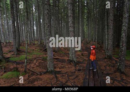 Jeune garçon solitaire en orange Veste pluie marche sur la promenade dans la forêt sombre, moody bois avec une lampe frontale sur la tête Banque D'Images
