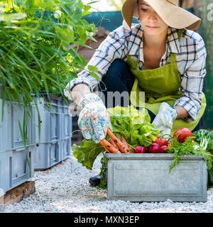 Belle jeune femme fermier avec des légumes fraîchement récoltés dans son jardin. Homegrown bio produit concept. Propriétaire de petite entreprise. Agricole durable. Banque D'Images