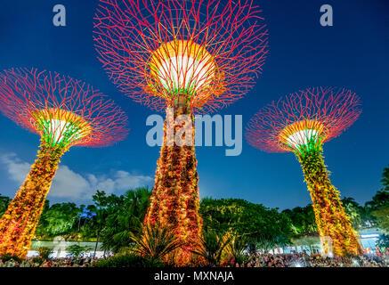 Singapour - le 29 avril 2018: Supertree Grove dans les jardins de la baie au cours de son et lumière Rhapsody Jardin montre à l'heure bleue dans le centre de Singapour, Marina Bay area. Attraction touristique populaire.