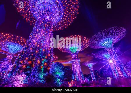 Singapour - le 29 avril 2018: Supertree Grove dans les jardins de la baie au cours de lumière avec le violet, indigo et éclairage rouge dans le centre de Singapour, Marina Bay area. Scène de nuit. Vue de dessous.