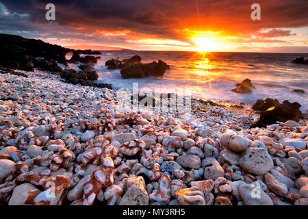 Coucher du soleil sur la plage avec corail. Maui, Hawaii. Banque D'Images