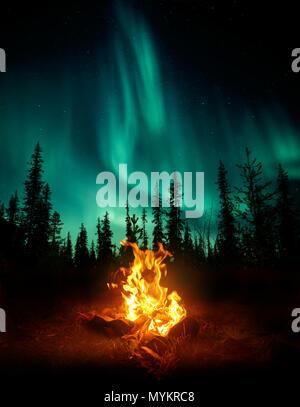 Une ambiance chaleureuse et confortable de camp dans le désert avec les arbres des forêts qui se profile en arrière-plan et les étoiles et les aurores boréales lightin Banque D'Images