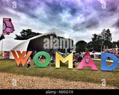 Malmesbury, UK. 28 juillet, 2017. Les enfants ont plaisir à jouer sur un panneau au festival Womad dans Charlton Banque D'Images