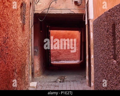 Abstract grunge background avec des murs rose et rouge, noir carré régulier au milieu de la passerelle. Banque D'Images
