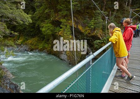 Les touristes en passerelle au-dessus de la rivière bleue, Bleu Piscines, Mount Aspiring National Park, Haast Pass, près de Makarora, Otago, île du Sud, Nouvelle-Zélande Banque D'Images