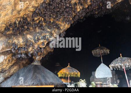 Festival Odalan, Pura, grotte de chauves-souris de Goa Lawah, Padangbai Bali, Indonésie Banque D'Images