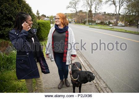 Personnes ayant une femme avec chien-guide parlant avec un ami sur un trottoir Banque D'Images