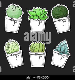 Pack autocollant de plantes succulentes en pot. Aquarelle stylisée. Vector illustration. Banque D'Images