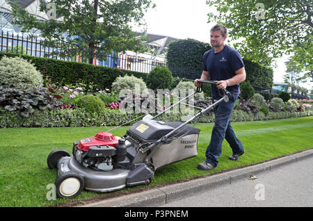 Un groundsman coupe l'herbe à Ascot Racecourse avant le premier jour de la réunion de Royal Ascot. Banque D'Images