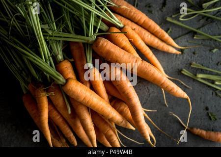Nantes bio carottes sur fond sombre rustique. Superfood fraîche Saine alimentation Concept. Banque D'Images