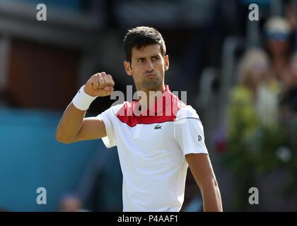 Queens Club, London, UK. 21 Juin, 2018. L'arbre de la fièvre; Championnats de Tennis Novak Djokovic (CRO) célèbre pour ses entraîneurs après avoir remporté le premier set contre Dimitrov: Action Crédit Plus Sport/Alamy Live News