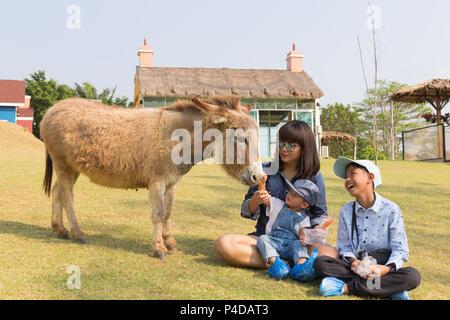 La famille de la mère d'Asie est de prendre soin de votre cute baby girl boy feeding carotte pour l'âne de la ferme, activités pour améliorer l'apprentissage de la famille expé Banque D'Images