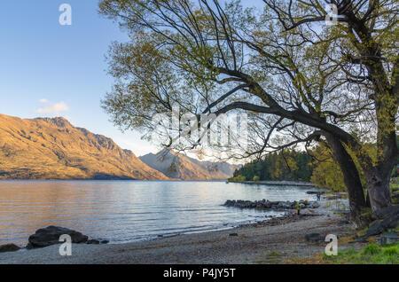 Belle vue sur le coucher de soleil dans le lac Wakatipu Queenstown, Nouvelle-Zélande. Banque D'Images