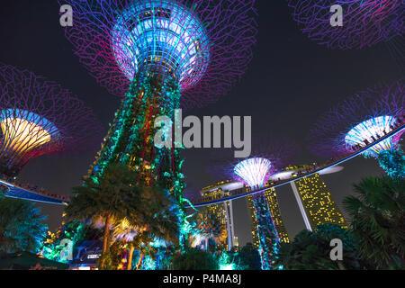 Singapour - le 29 avril 2018: Supertree Grove au cours de jardin à Rhapsody jardins au bord de la baie. Light Show est attraction touristique populaire dans le centre de Singapour, Marina Bay area. Scène de nuit. Vue de dessous.
