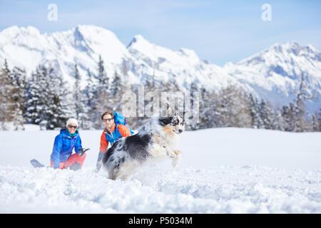 Autriche, Tyrol, les randonneurs en raquettes et de chien, sauter dans la neige Banque D'Images