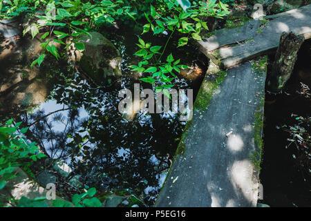 Petit pont de bois sur stream in Japanese garden Banque D'Images