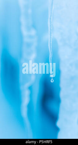 L'eau de fusion de glaçons dans la glace de mer, l'île de Ross, en Antarctique Banque D'Images