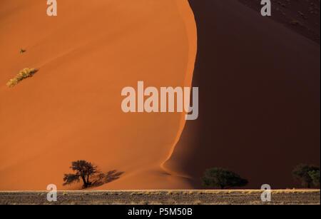 Dunes de sable de Sossusvlei, Namibie Banque D'Images