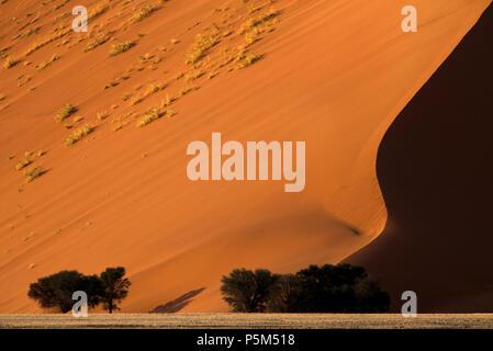Dune de sable à Sossusvlei, Namibie Banque D'Images