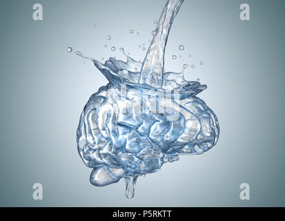 Le cerveau est rempli d'eau.3D illustration Banque D'Images