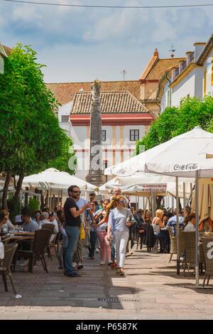 Cordoba cafe bar, voir des gens assis à l'extérieur des cafés et des bars dans le populaire Calle Enrique Romero Torres dans la ville de Cordoue, Andalousie, espagne. Banque D'Images