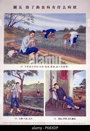 L'affiche chinoise montre trois images différentes, l'sont conçues pour accroître la sensibilisation de l'ankylostomiase infections. Chaque image montre un agriculteur qui ont des symptômes de l'infection. Les caractères chinois sont indiqués sous chaque image, l'identification des signes typiques de l'infection. Du c1940 Banque D'Images