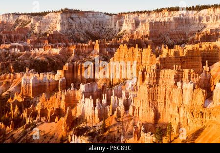 Bryce Canyon National Park,quand lever du soleil,Utah, USA. Banque D'Images