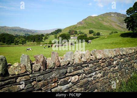 Ardoise lakeland muret de pierres sèches avec les champs et les collines près de Grasmere dans le Lake District, Cumbria england uk