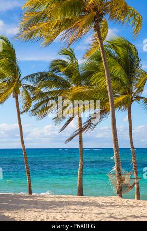 Cuba, Holguín, hamac entre palmiers sur Playa Guardalvaca Banque D'Images