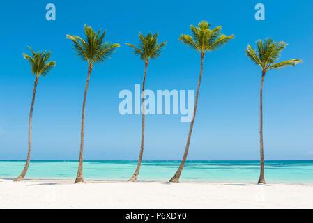 Juanillo Beach (playa Juanillo), Punta Cana, République dominicaine. La plage bordée de palmiers. Banque D'Images