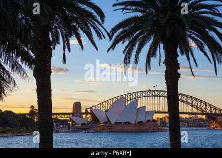 Opéra de Sydney et le Harbour Bridge, Darling Harbour, Sydney, New South Wales, Australia Banque D'Images