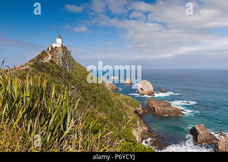 Nouvelle Zélande, île du Sud, Southland, le Nugget Point, Catlins, Nuggett Point LIghthouse, elevated view Banque D'Images