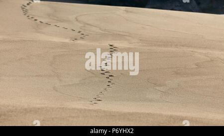 Empreintes dans une grande dune de sable de plage vide du nord du Portugal. Point sur le premier plan des empreintes de pas. Banque D'Images