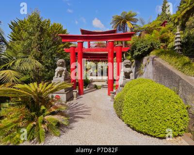 Jardins orientaux dans le Jardin Tropical Monte Palace, Monte, Funchal, Madeira, Portugal Banque D'Images