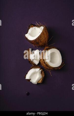 12.2005 coconut organisées sur fond violet foncé Banque D'Images