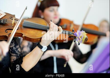Deux musiciens jouant du violon sur une réception de mariage Banque D'Images