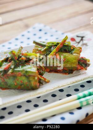Concombre farci de nourriture coréenne pickles, concombre kimchi, OI-ainsi-bagi Banque D'Images