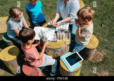Les jeunes élèves du primaire à la découverte des herbes à travers leurs sens dans un jardin. Vue de dessus de l'école des enfants assis autour d'une table et d'apprentissage sur les plantes.