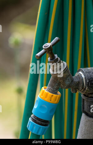 Un robinet extérieur en laiton vintage avec un tuyau attaché Banque D'Images