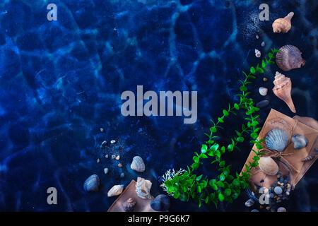 L'algue, les coquillages et le sable dans une vie encore sous-marine sur un fond sombre avec de l'eau. Voyages en mer et plongée sous-marine concept avec copie espace Banque D'Images