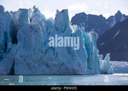 La face du glacier, Monacobreen, France