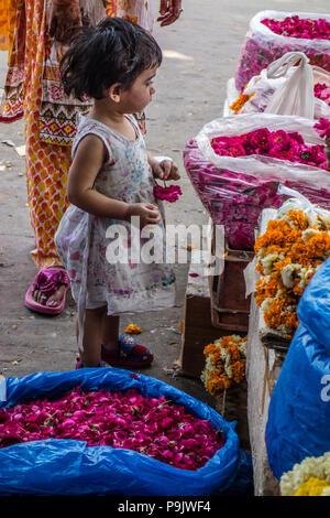Petite fille indienne à la recherche de paniers de fleurs à un décrochage du marché dans la vieille ville de Delhi, Delhi, Inde Banque D'Images