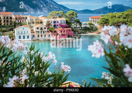 Lilas et blanc fleur fleur en face de couleur turquoise bay en mer Méditerranée et de belles maisons colorées à Assos village de Kefalonia, Grèce Banque D'Images