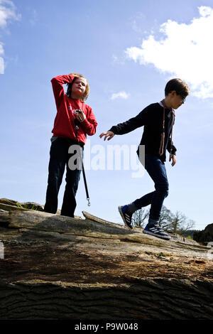 Low angle portrait de deux garçons de dix ans, l'un avec chien de plomb, de jouer sur sur un arbre tombé. Ciel bleu ensoleillé avec des nuages dispersés blanc
