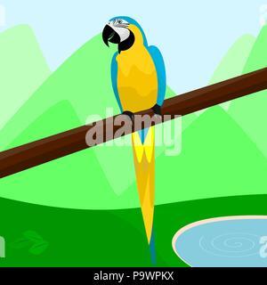 Perroquet mignon reposant sur un vecteur de la direction générale Banque D'Images