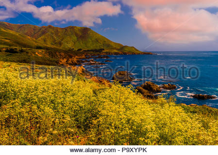 Afficher le long de la route l'un sur la côte de Big Sur entre Carmel Highlands et Big Sur, Monterey County, Californie, États-Unis. Banque D'Images